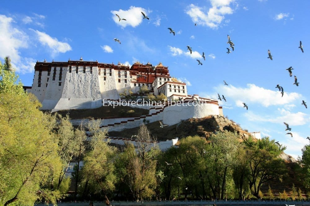 Potala Palace Lhasa Day Tour-3