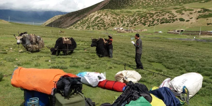 tibetan trekking tours