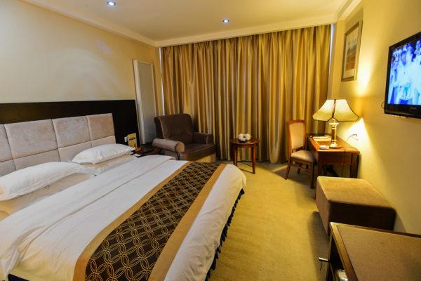 Lhasa Ganggyan Hotel Tibetan Suite