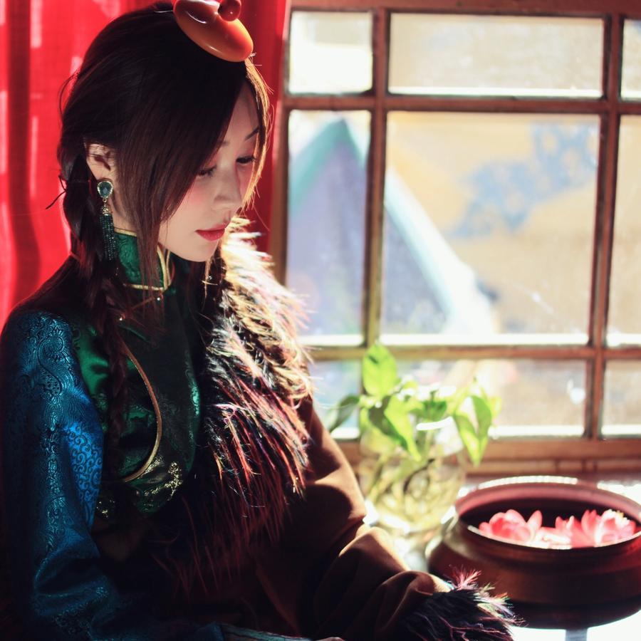Lhasa Badacang Hotel 5