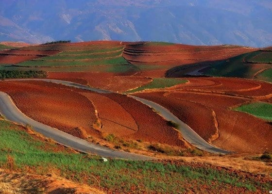 1 Day Dongchuan Red Land Tour Featured