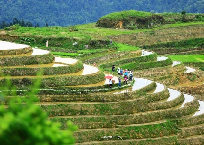 1 Day Longji Rice Terraces Tour Featured
