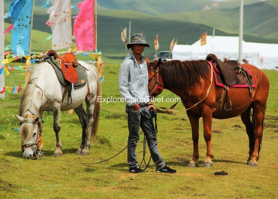 5 Days Sichuan Songpan Horse Riding Tour 1