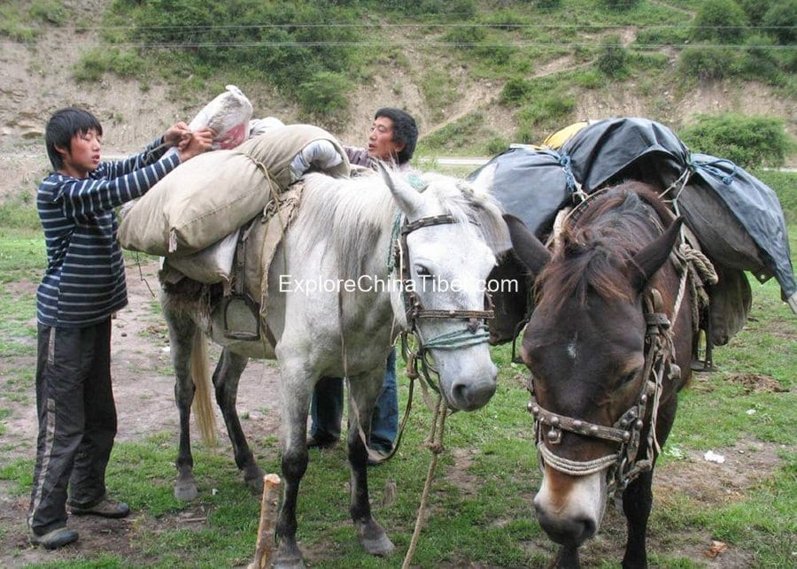 5 Days Sichuan Songpan Horse Riding Tour 7