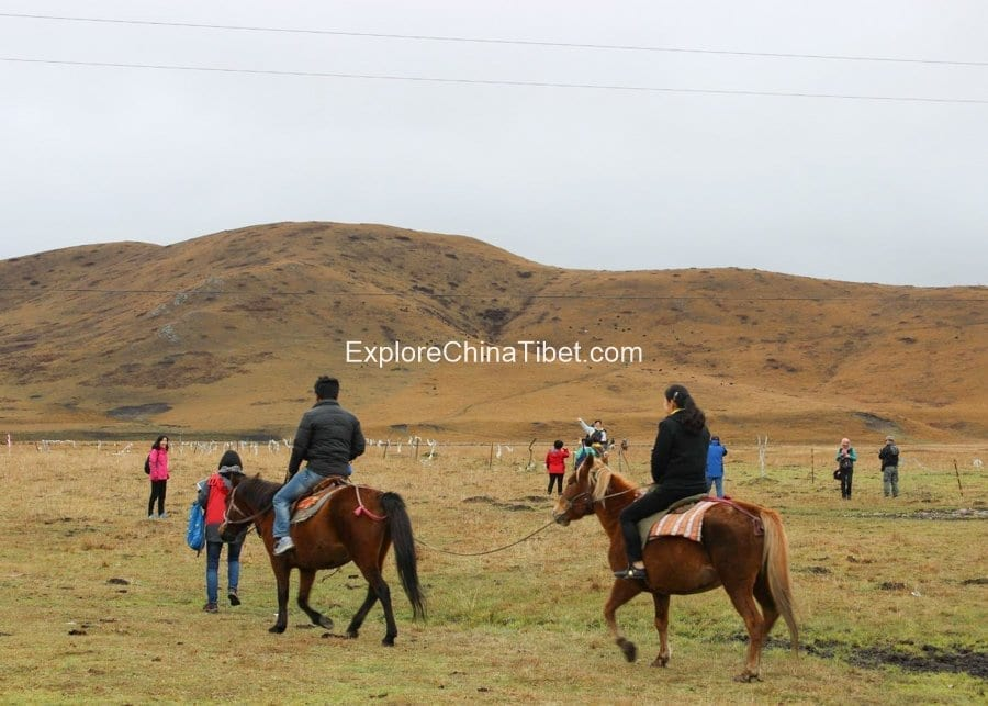 5 Days Sichuan Songpan Horse Riding Tour 8