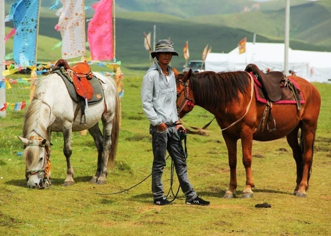 5 Days Sichuan Songpan Horse Riding Tour Featured