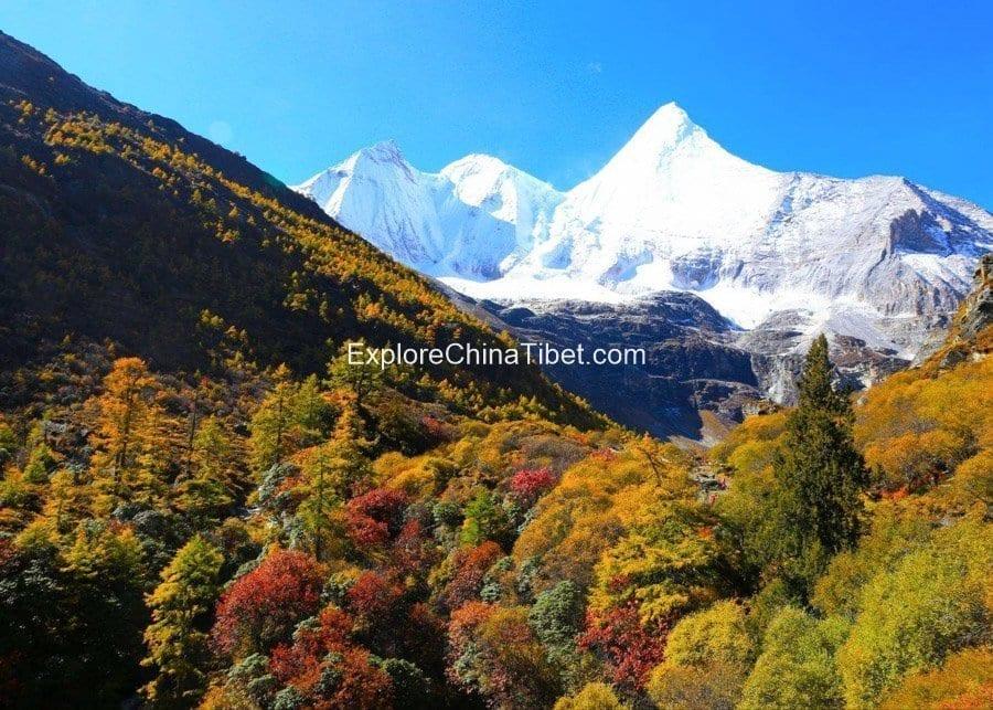 Daocheng-Yading-Nature-Reserve-Trip