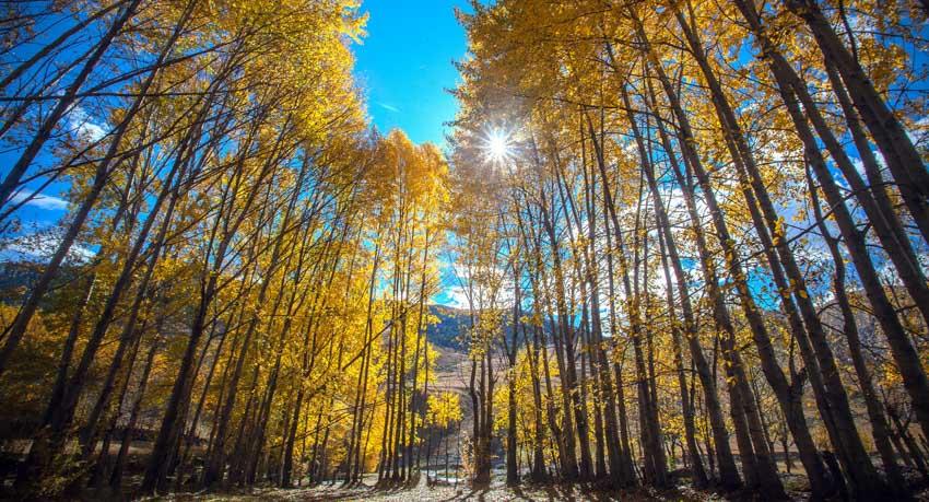 Fabulous Natural Scenery in Western Sichuan-Garze Kham Tibetan Area Tour Xinduqiao