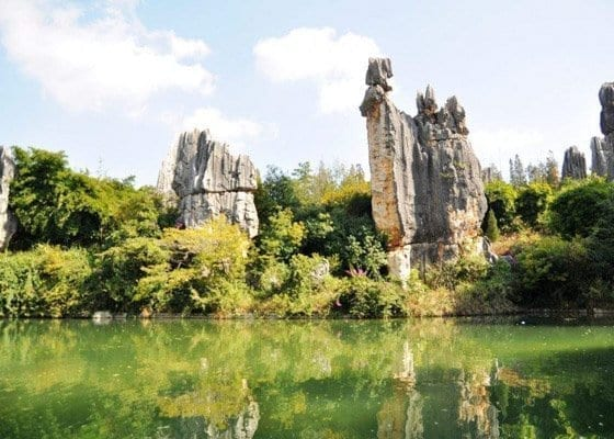 Half Day Stone Forest Tour Featured