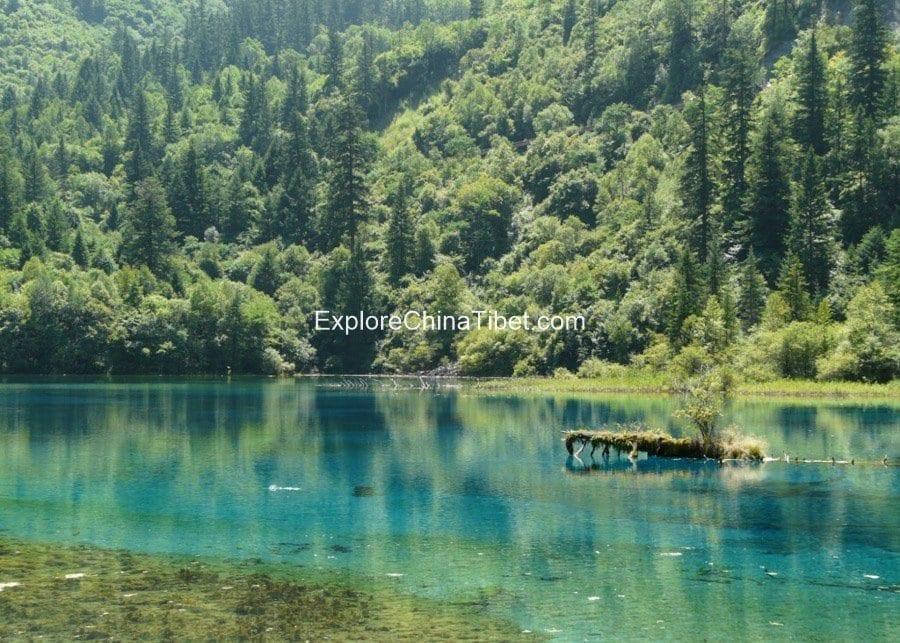 Jiuzhaigou Day tour-Five Flower Lake 1