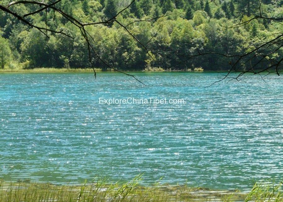 Jiuzhaigou Day tour-Five Flower Lake