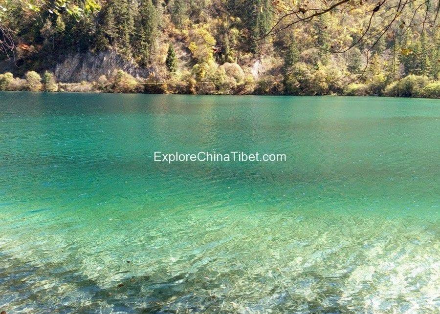 Jiuzhaigou Day tour-Panda Lake 2